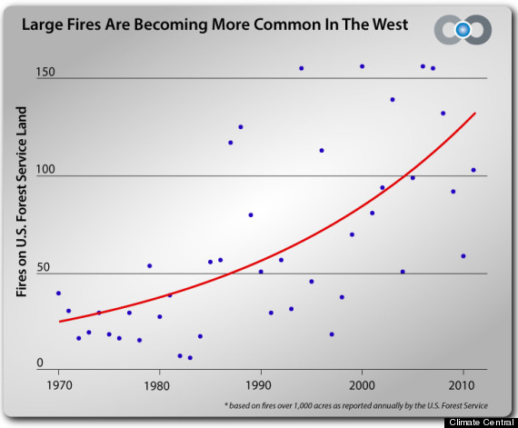 wildfire report 2012
