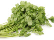 Cilantro Aversion Linked To Gene For Smell, New Study Finds