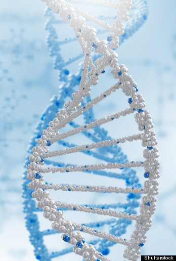 Cambridge Laboratories: Proteomics Case Solution