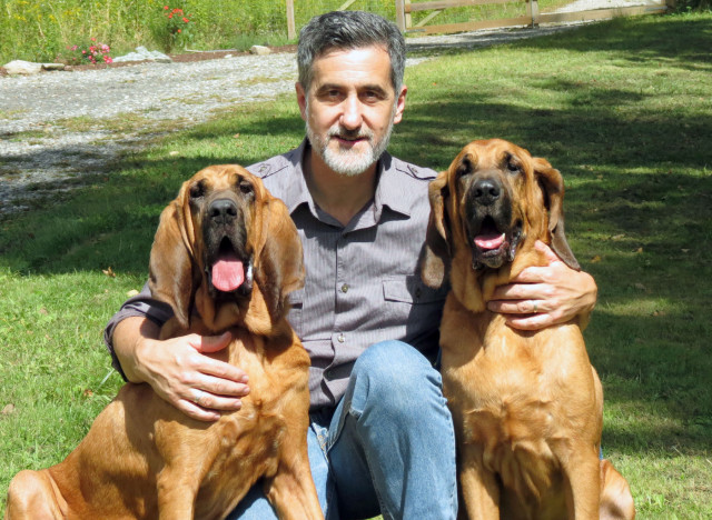 Broadway Bloodhounds: Adopted Puppies Pete And Lily Get