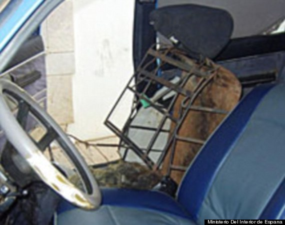 seat smuggling morocco