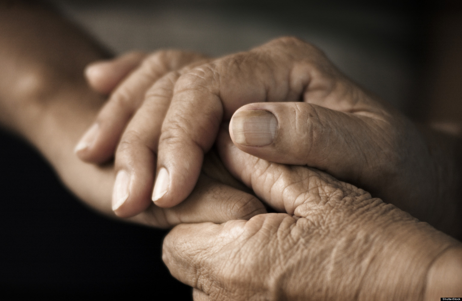 care of the elderly When caring for the elderly, there are a number of important things you have to  take into consideration as well as the possibility of nursing home care and.