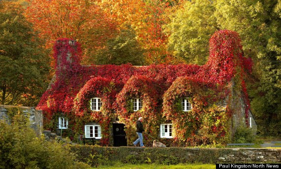 awesome_autumn_3