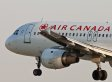 Air Canada's Lost Dog Response Is Infinitely Stupid, Creates PR Nightmare