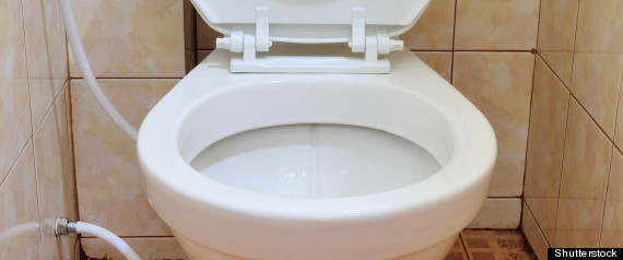 STEAL TOILET