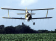 Pesticide Use Proliferating With GMO Crops, Study Warns