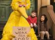Mitt Romney's Big Bird Attack Threatens Thousands Of U.S. Jobs