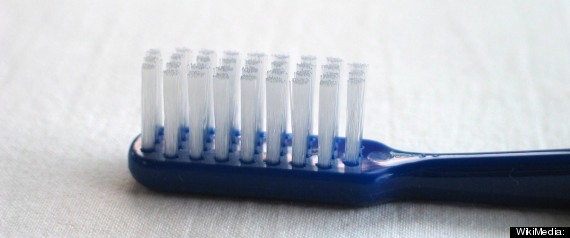 Stephan Evans Toothbrush