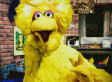 New Obama Ad Goes After Mitt Romney On Big Bird