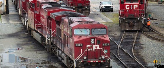 Grizzly Cubs Killed Cp Rail