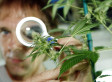 FDA Moves Forward With Marijuana-Based Drug To Fight Childhood Epilepsy