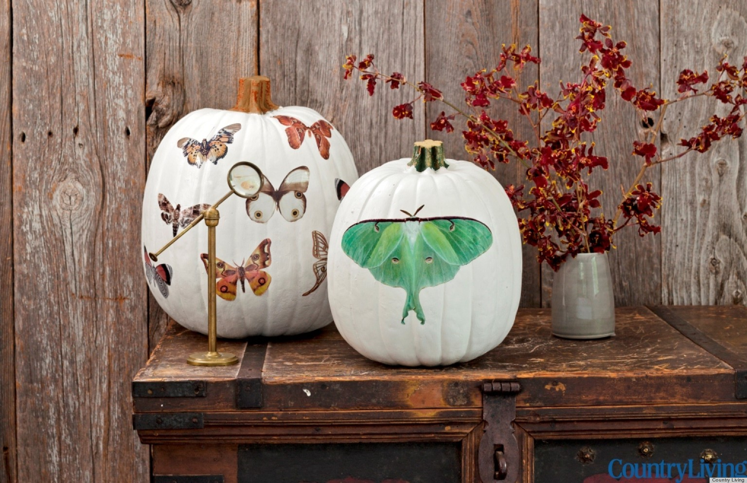 halloween decorations moth decal pumpkins from country living huffpost - Simple Homemade Halloween Decorations