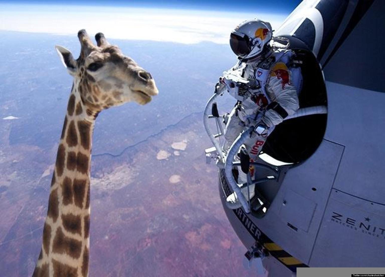 Felix Baumgartner's Space Jump: The Best Photoshop Funnies (PICS) | HuffPost UK
