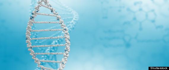 DIABETES GENETICS HEART