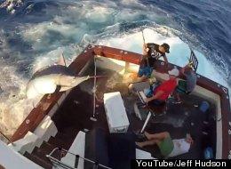 WATCH: 600-Pound Marlin Wreaks Havoc On Fishing Boat