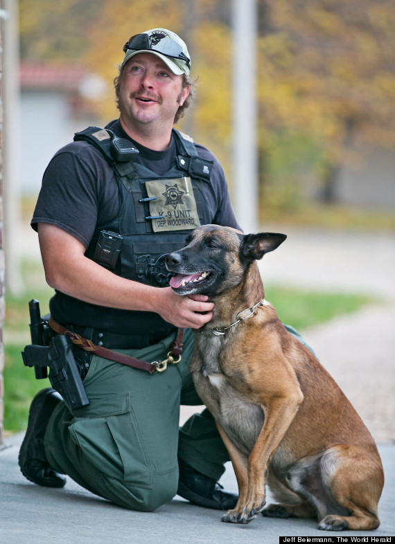 andy woodward police dog insurance