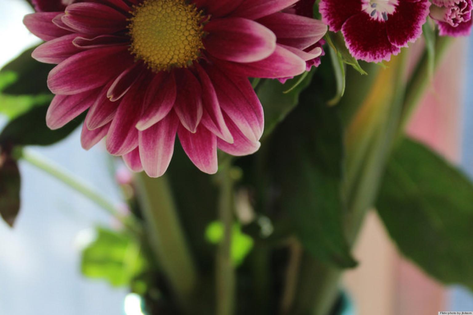 Wedding Flowers How To Keep Fresh : How to keep flowers fresh longer using up huffpost