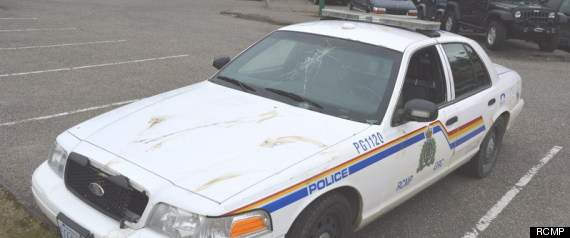RCMP MOOSE DAMAGE