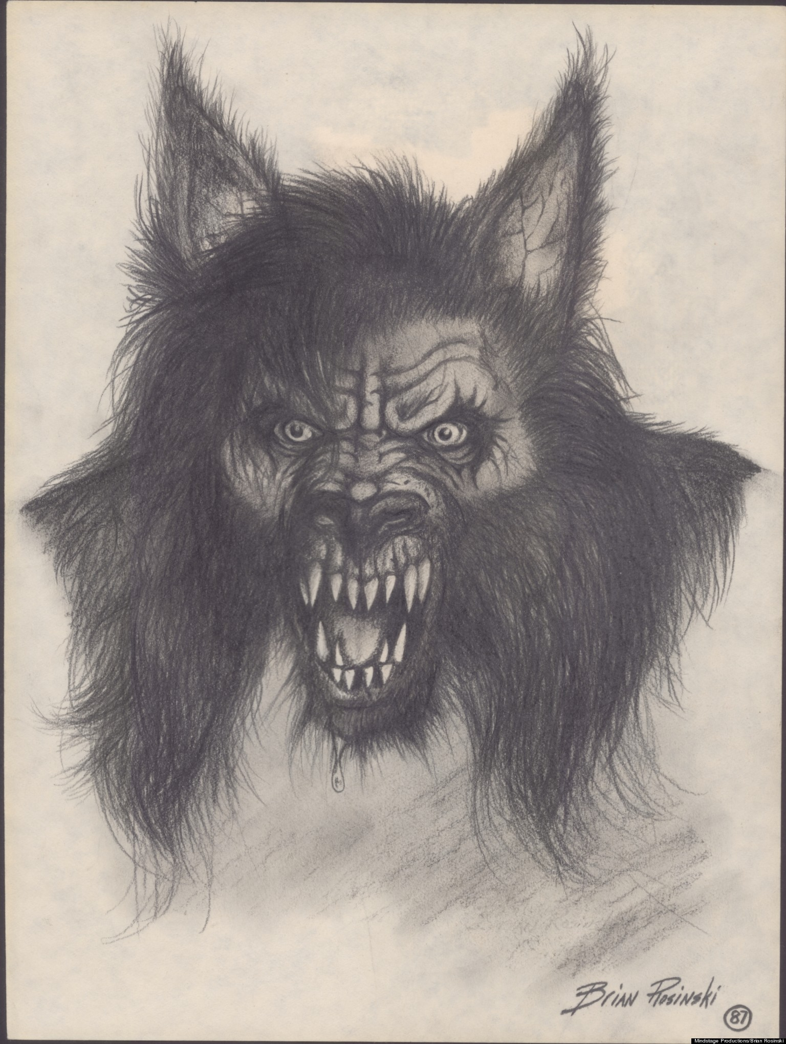 Michigan Dogman