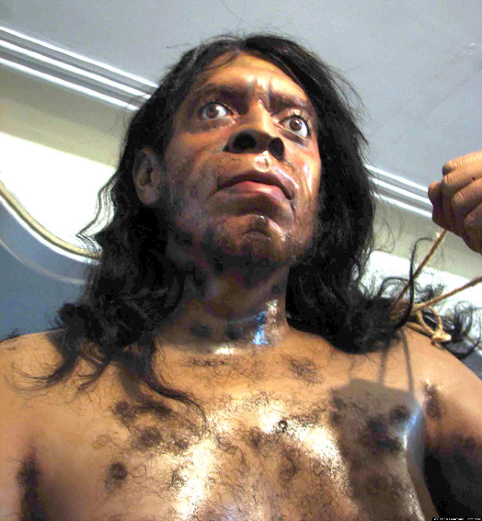 Caveman Modern Man : Caveman diet stone age humans ate less meat than
