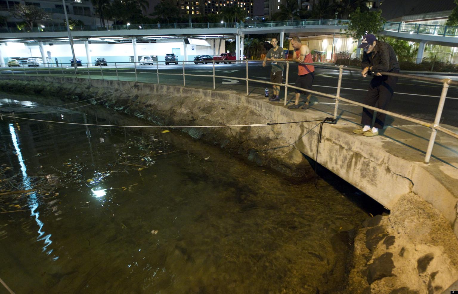 hawaii tsunami hits following canada earthquake huffpost
