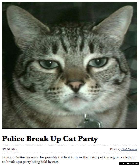 best headline ever