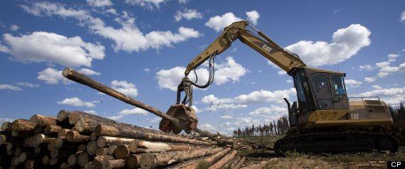HURRICANE SANDY CANADA FORESTRY ECONOMY