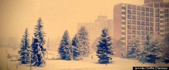 EDMONTON SNOWSTORM