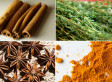 Healthy Herbs: 25 Of The Best For Your Body
