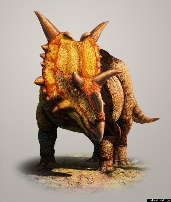 xenoceratops dinosaur alberta