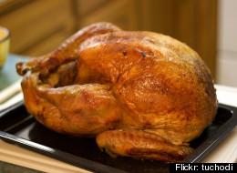 Turkey Hunt: A Bird Buying Guide