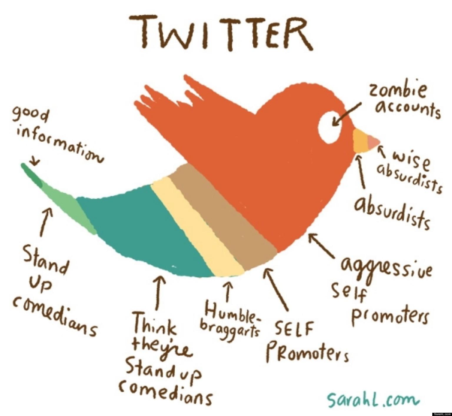 Twitter Explained (CHART)