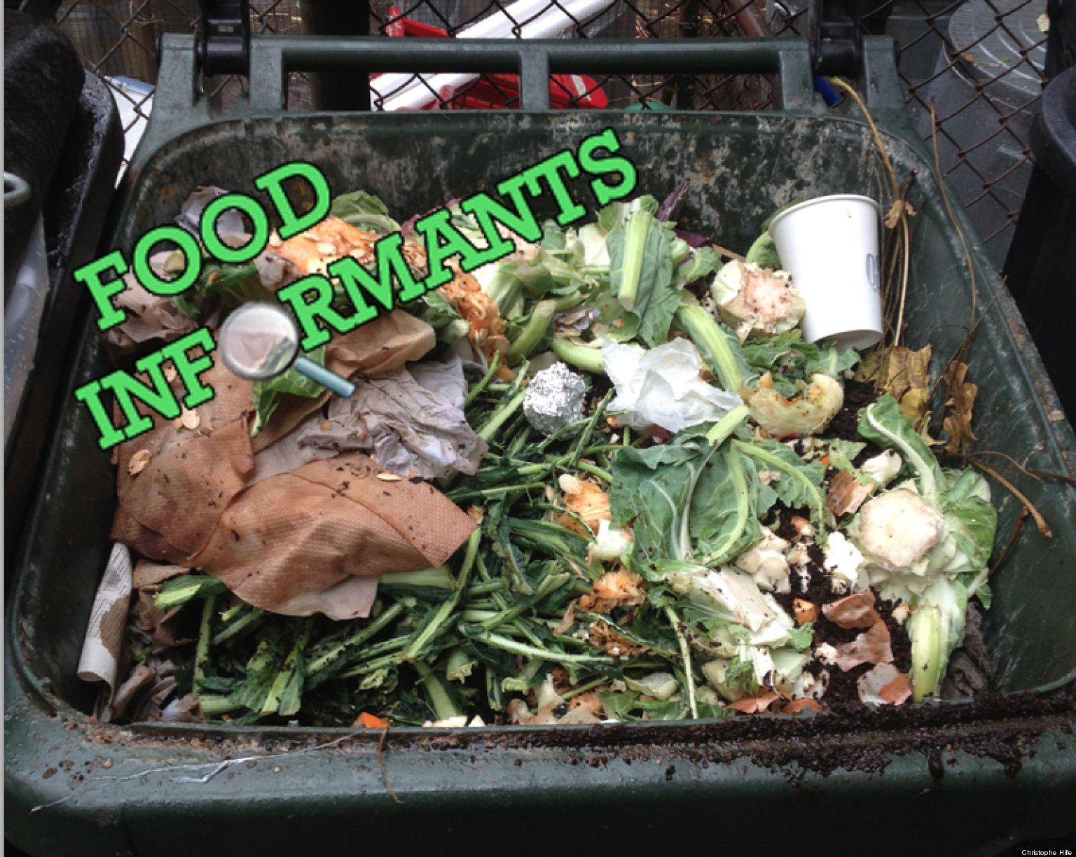 Wastage of food essay