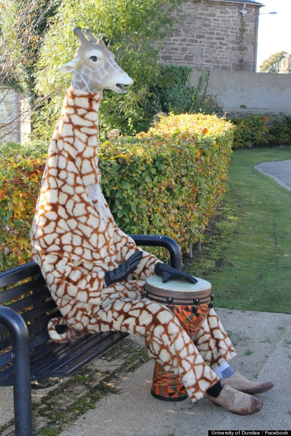 good giraffed dundee scotland