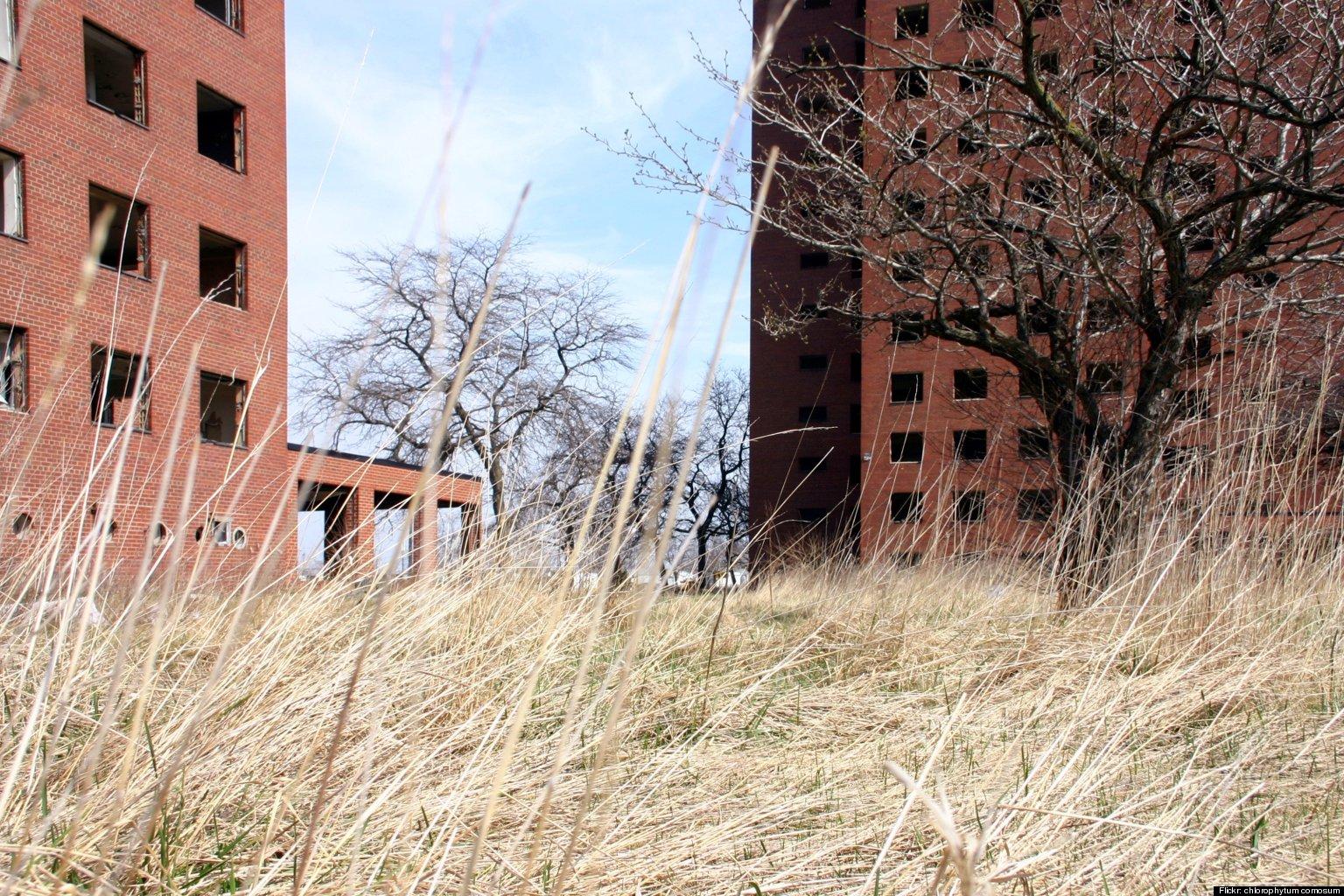 brewster douglass projects vacant detroit housing complex awarded  million  demolition