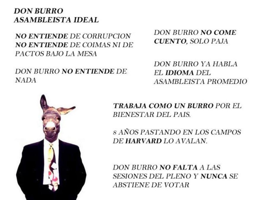 don burro ane