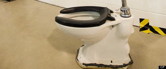 Maple Leafs Toilet