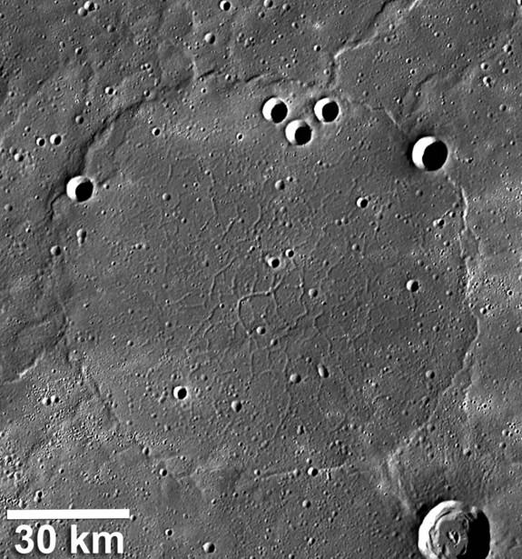 mercurypiecrust