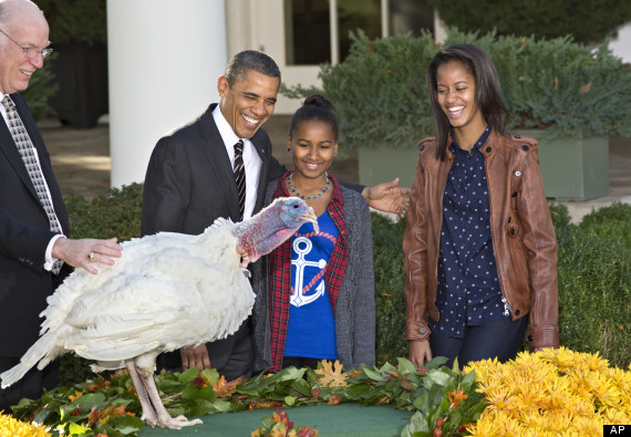 obama thanksgiving turkey pardon