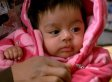Pit Bull Saves Nayeli Garzon-Jimenez's Baby From Kidnappers During Indiana Burglary (VIDEO)