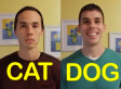 Cat-Friend vs. Dog-Friend: If Your Friends Acted Like Your Pets (VIDEO)