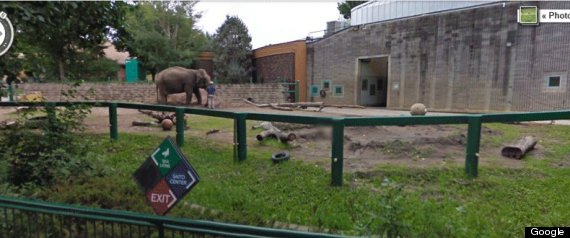 GOOGLE STREET VIEW EDMONTON VALLEY ZOO