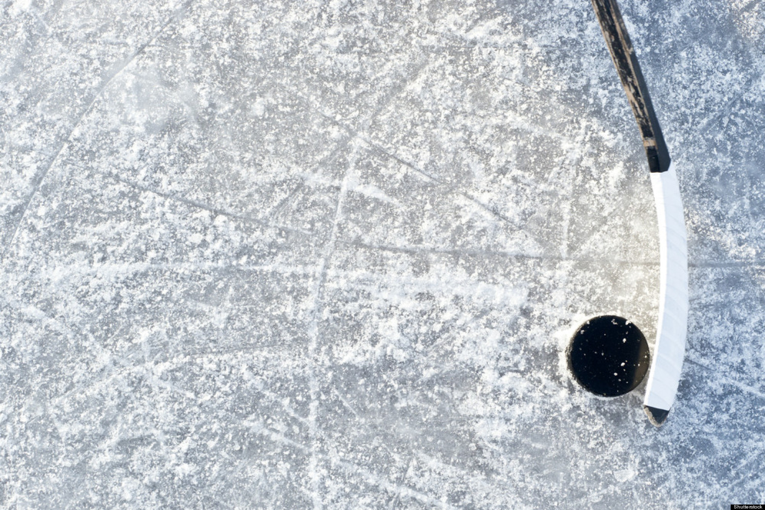hockey player concussions male and female injuries more
