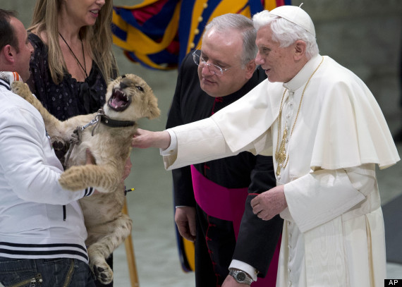 the pope and the lion