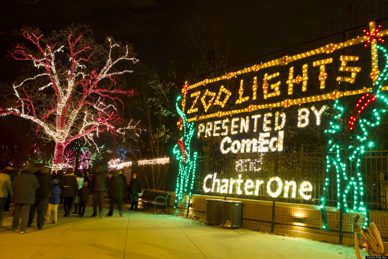 Lincoln Park Zoo Lights Ignite The Holiday Skies Photos