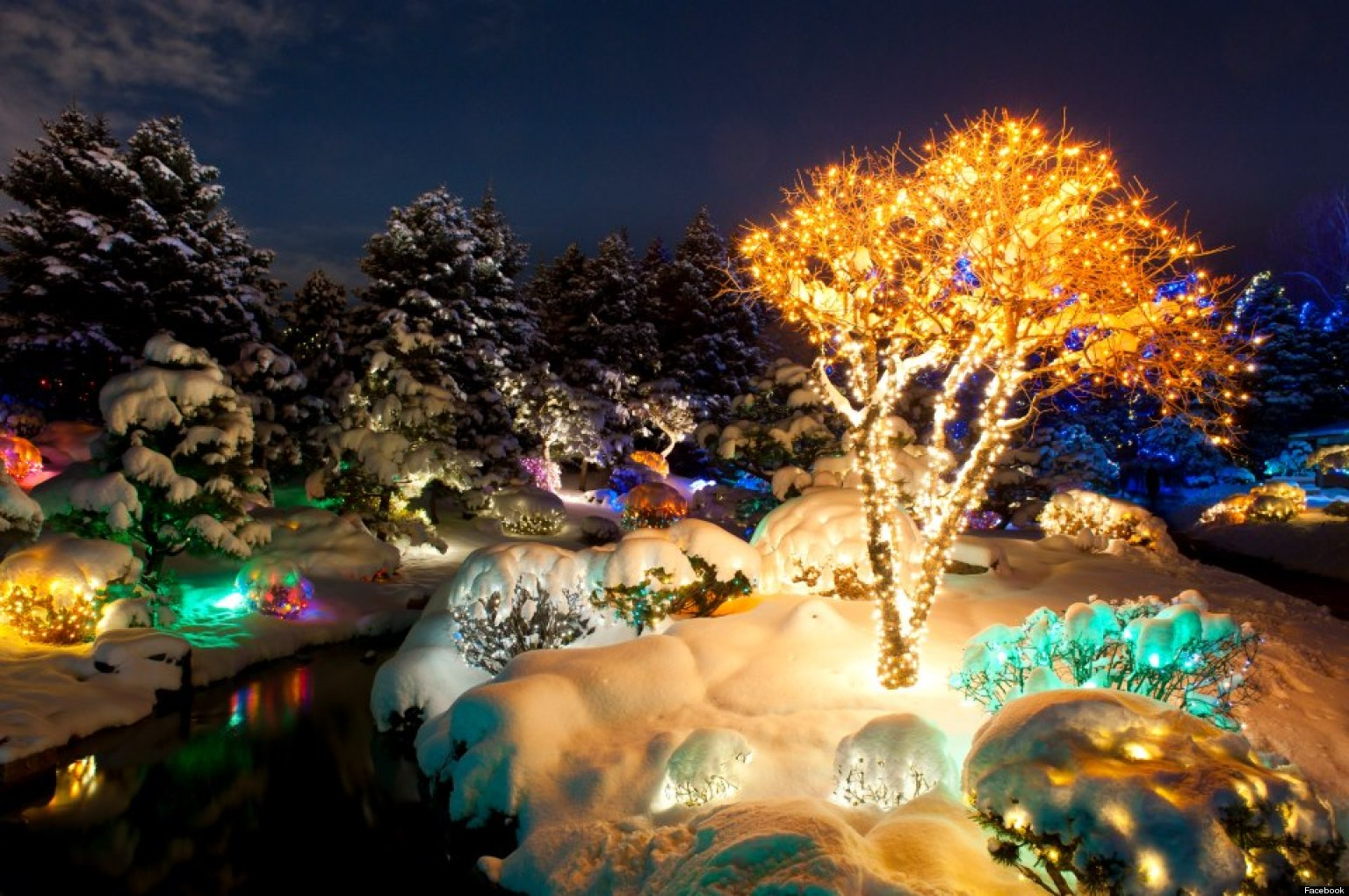 Blossoms Of Light White Christmas A 1940s Christmas Ball And More Things To Do In Denver
