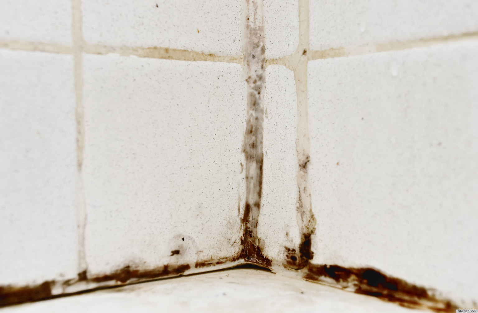 how to remove mold from your bathtub huffpost - How To Get Rid Of Bathroom Mold
