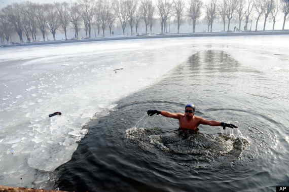 ice swimmer