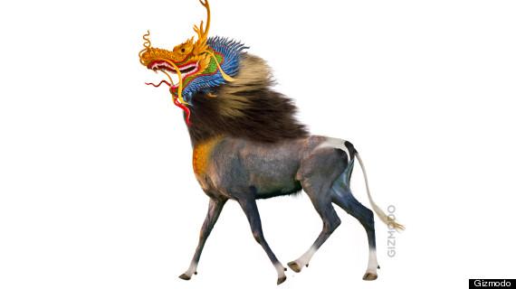 licorne coree du nord