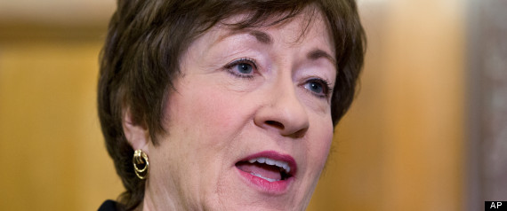 Susan Collins Immigration